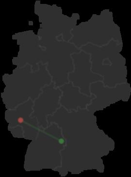 Riesen Hornissen Kommen Nach Deutschland